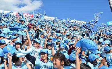 12 ジュビロ磐田(サッカー)試合観戦チケットヤマハ・エコパスタジアム(フリーゾーン)大人2名