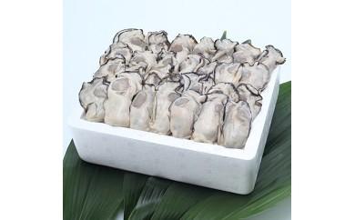 牡蠣(むきみ)