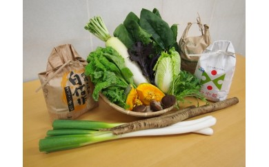 NB153 ほっとおつかい便Mottekuがお届けする 酒田のお米3種食べ比べと季節の野菜セット