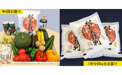 D-1 特産品詰め合わせセット③× 年4回 と 村長の太鼓判1年分(40kg)