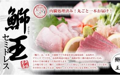 Z4500 鰤王まるごと1本 豪華4500g(お刺身用)
