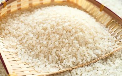 [№5784-0094]豊かなお米コシヒカリ(特別栽培米)5kg