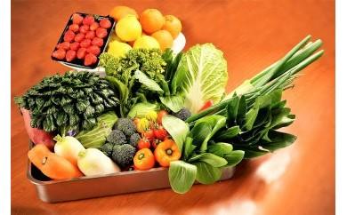 【K037】シェフの目線「大洲もぎたてフルーツ&旬野菜詰合せ」【80pt】