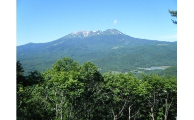 番号:146 御嶽山噴火災害慰霊碑建立のための協力費