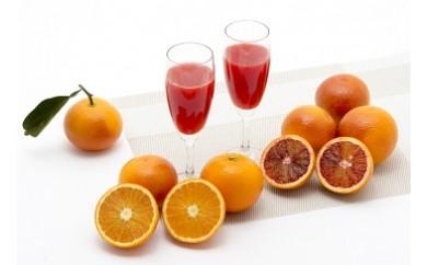 O-106 山内農園のブラッドオレンジ 5kg