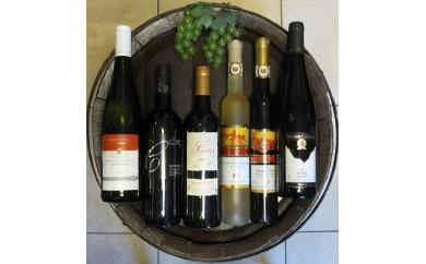 輸入元厳選高級ワイン6本セット(ドイツ・フランス)