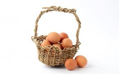 F-503.甲州放牧卵の定期便 18個×10回