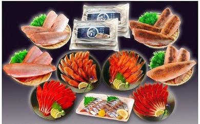 CC-18002 お刺身5種盛りセット(根室産サンマ、紅鮭2種、オホーツクサーモン2種)[276359]