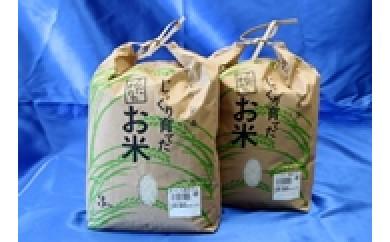 【10011】☆限定50☆富加町のお米『コシヒカリ・ハツシモ』 各3㎏
