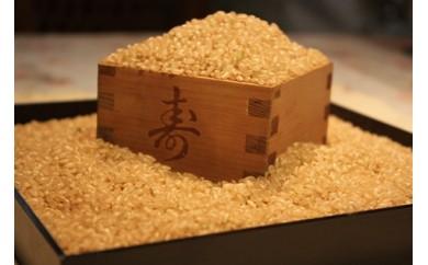C18 お米マイスターが厳選した合鴨農法こしひかり10kgと自然食品