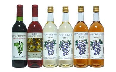 BZS07 「常陸ワイン 山ブドウ交配種 小公子・山ブドウ交配種ロゼ・巨峰 白・ロゼ」のセット