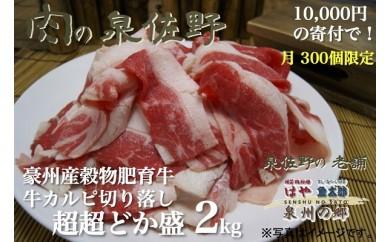 B067 穀物肥育牛 牛カルピ切落とし超超ドカ盛2.0kg