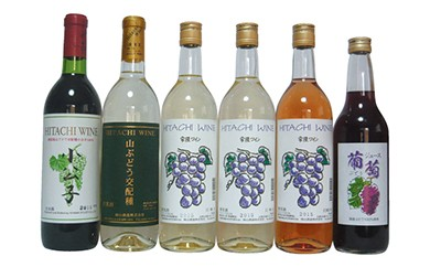 BZS06  常陸ワイン「山ブドウ交配種 小公子・ワイングランド白・巨峰 白・ロゼ」と葡萄ジュースのセット