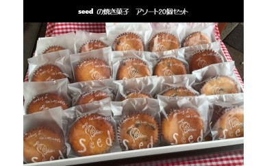 B226 seedパウンドケーキアソート 20個セット