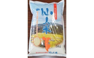 B12 【H30年産新米】仙人米(低農薬・有機米)5kg【数量限定】