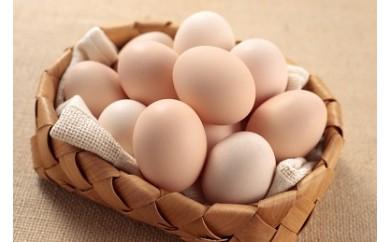 純国産鶏がISO認定農場で産んだ新鮮さくらたまご100個セット