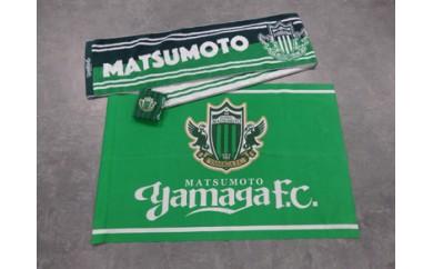 アルウィンへ行こう! 2017 松本山雅FC応援グッズ