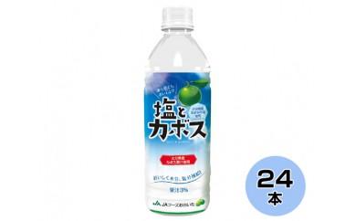 No.105 塩とカボスジュース【10pt】