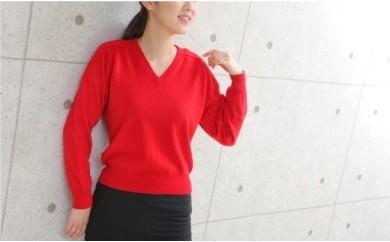 015-001 < ニット > Vセーター(メンズ) カシミヤ100%