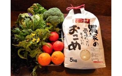 【K028】シェフの目線「大洲産クリーン白米&季節のお野菜詰合せ」【100pt】