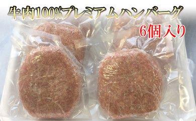 AM05 地元豊前産の牛肉を使用した牛100%プレミアムハンバーグ【10000pt】