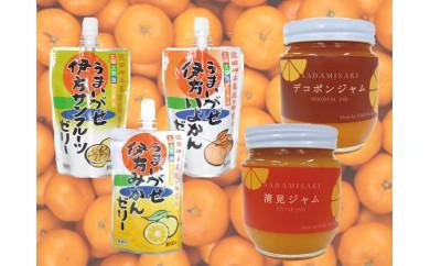 1-3 柑橘の加工品詰合せ