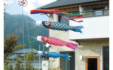 JJ-9 2.5m6点 友禅鯉 庭園用ガーデンセット