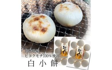 R102 【数量限定】佐賀県産のもち米を100%使用した丸餅10個入の2袋セット【20pt】