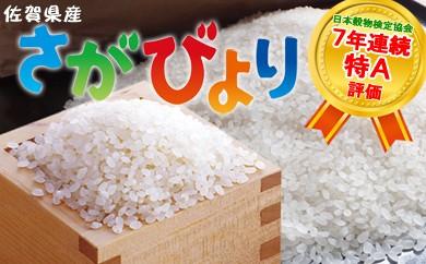 C11-J 7年連続・食味特Aのお米「さがびより」 20kg(10kg×2)【心も晴れやか、佐賀日和】