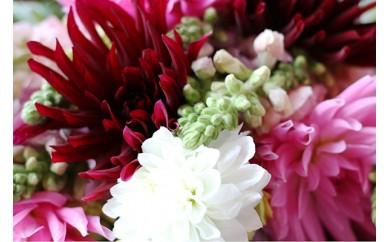 NC43  四季を楽しむ酒田のお花たちをお届けします。