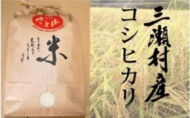 17008.希少!三瀬村産「コシヒカリ」A