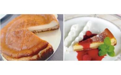 17035.どんぐり村のジャージーヨーグルトチーズケーキ