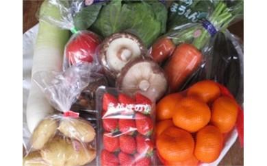 17119.野菜と旬の果物詰合せ