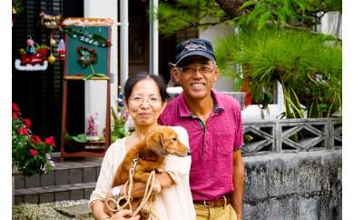 沖縄民泊うちなータイム(ホームスティ)晩御飯・朝ごはん付き