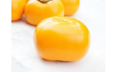 1701136 とろけるおいしさ、おけさ柿(7kg)
