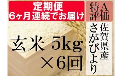 G-5 《6ヶ月毎月お届け》佐賀県産さがびより 玄米5kg定期便