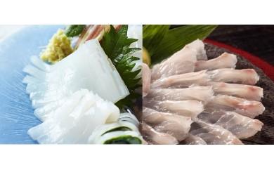 【地場】イ-27  呼子の松イカ姿造り&鯛の薄造りセット