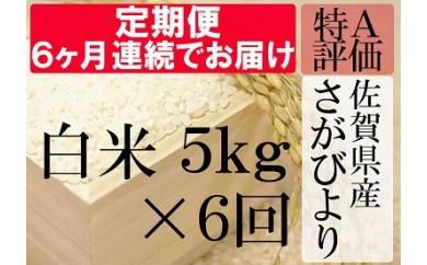 G-4 《6ヶ月毎月お届け》佐賀県産さがびより 白米5kg定期便