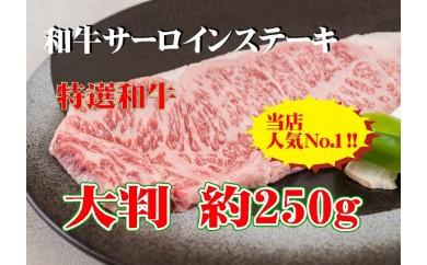 B246 黒毛和牛サーロインステーキ 約250g