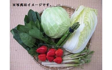 【A0311】季節の野菜5品&果物1品セット