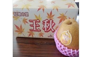 30 王秋梨 5kg箱