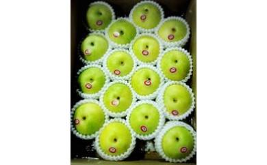 29  二十世紀梨 5㎏箱