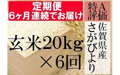R-2 【特A】《6ヶ月定期便》佐賀県産さがびより 玄米(毎月20kg×6回)
