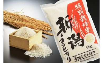 1703056 『定期便』平成29年産 新潟県認証 特別栽培米コシヒカリ 白米10kg × 3か月