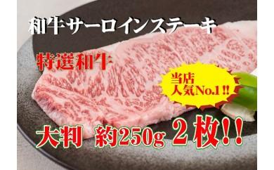 C110 黒毛和牛サーロインステーキ 約250g 2枚