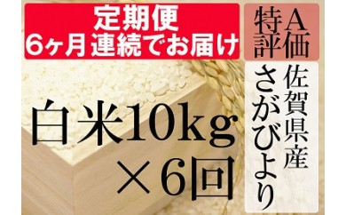 J-3 【特A】《6ヶ月定期便》佐賀県産さがびより 白米(毎月10kg×6回)
