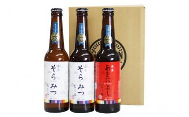 [№5825-0114]クラフトビール紅白3本セット