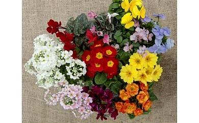 7.季節の花の詰め合わせ