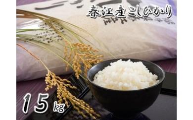 [A-0301] 坂井市春江町産コシヒカリ15㎏ ~春江町育ちの美味しいお米~