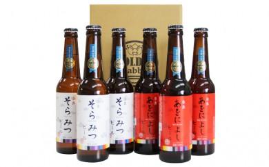 [№5825-0116]クラフトビール紅白6本セット